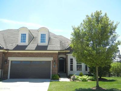 Clinton Twp Condo/Townhouse For Sale: 21114 Lilac Lane