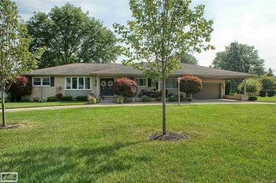Clinton Twp Single Family Home For Sale: 37746 W Horseshoe Drive