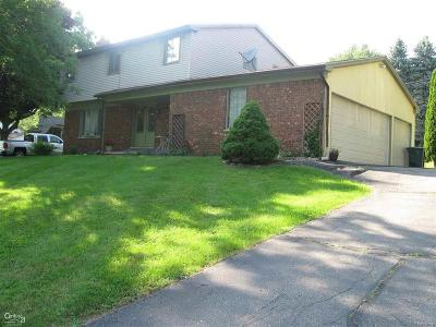 Rochester Hills Single Family Home For Sale: 2336 Arizona