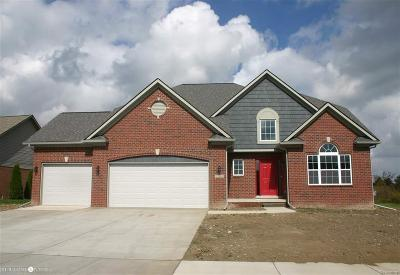 Brownstown Twp Single Family Home For Sale: 20965 Prairie Creek Blvd