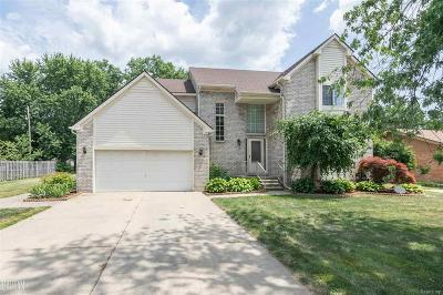 Clinton Twp Single Family Home For Sale: 33222 Louise