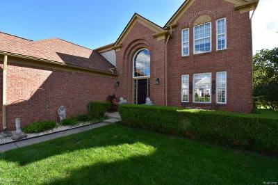 Macomb Twp Single Family Home For Sale: 17806 Kenai Lane
