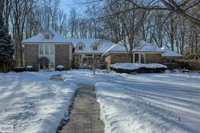 Shelby Twp Single Family Home For Sale: 55619 Lordona Lane