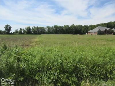 Ray Twp Residential Lots & Land For Sale: 22770 30 Mile