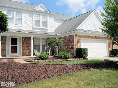 Sterling Heights Single Family Home For Sale: 34428 Orsini Drive.
