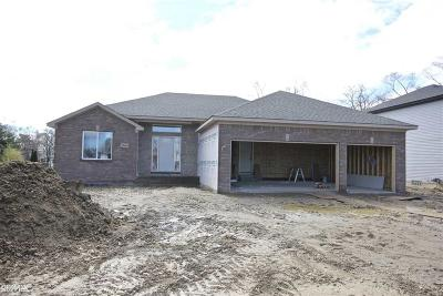 Fraser Single Family Home For Sale: 33464 Klein
