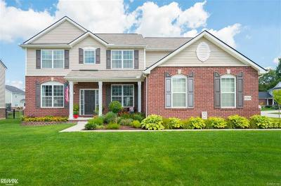 Macomb Twp Single Family Home For Sale: 22343 Hythe Dr