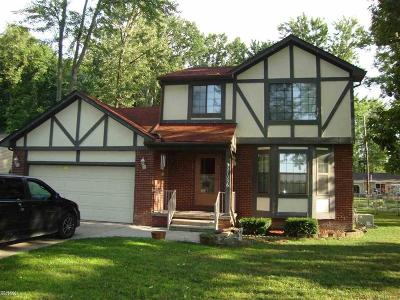 Chesterfield Twp Single Family Home For Sale: 27056 Galassi