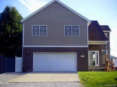 Chesterfield Twp Single Family Home For Sale: 28708 Field