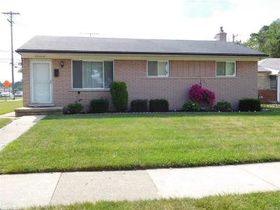 Macomb County Single Family Home For Sale: 29009 Van Laan