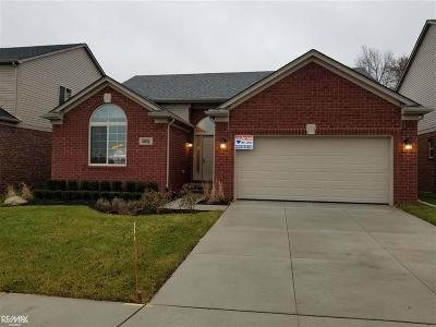 Shelby Twp Single Family Home For Sale: 5802 Valyn Dr