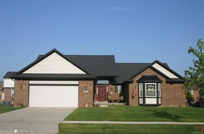 Brownstown Twp Single Family Home For Sale: 20869 Prairie Creek Blvd