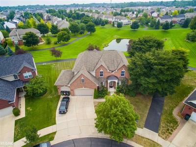 Shelby Twp Single Family Home For Sale: 49602 Whitehall