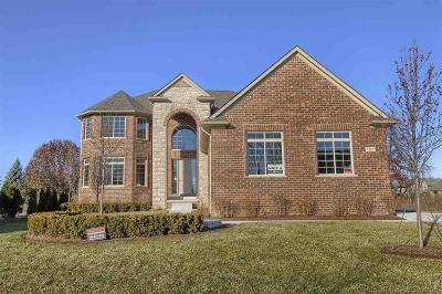 Shelby Twp Single Family Home For Sale: 7117 Sunrise Dr.