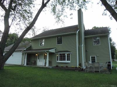 Clarkston Single Family Home For Sale: 4780 Mohawk