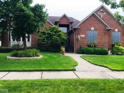 Macomb Twp Single Family Home For Sale: 16126 Clinton Ave
