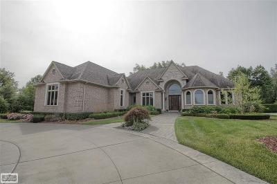 Washington Twp Single Family Home For Sale: 6532 Pond Drive