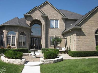 Clinton Twp Single Family Home For Sale: 43855 Harlequin Ln
