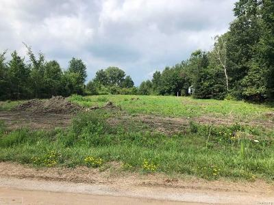 Armada Twp Residential Lots & Land For Sale: 75361 True
