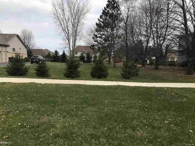 Shelby Twp Residential Lots & Land For Sale: 13147 22 Mile