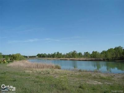 Macomb County Residential Lots & Land For Sale: 19577 Armada Ridge