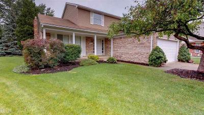 Macomb Twp Single Family Home For Sale: 17451 Delaware
