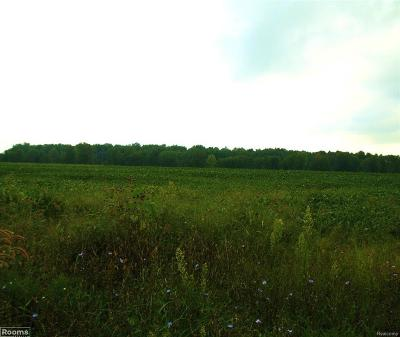 Macomb County Residential Lots & Land For Sale: 34 Mile Lot 1