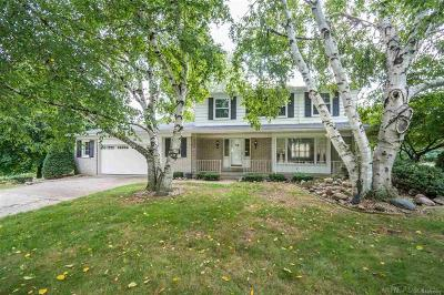 Sterling Heights Single Family Home For Sale: 41848 Hillview Dr