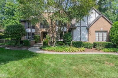 Shelby Twp Single Family Home For Sale: 14677 Towering Oaks Dr.