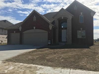 Macomb Twp Single Family Home For Sale: 21948 Rio Grande