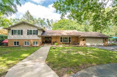 Clinton Twp Single Family Home For Sale: 15879 Millar