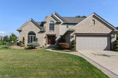 Shelby Twp MI Single Family Home For Sale: $349,900