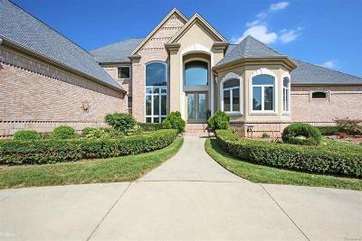 Washington Twp Single Family Home For Sale: 57054 Juliann