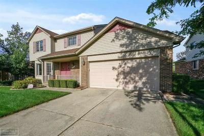 Clinton Twp Single Family Home For Sale: 44220 Pentwater