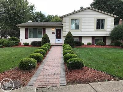 Sterling Heights Single Family Home For Sale: 13828 Hillsdale