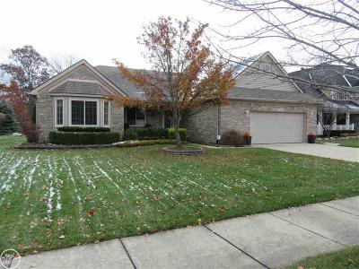 Macomb Twp Single Family Home For Sale: 45896 Lookout