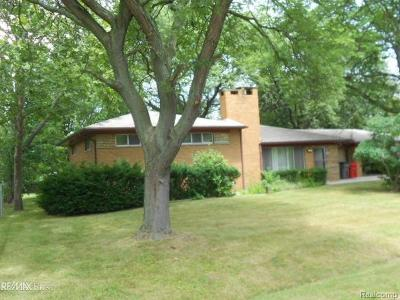 Clinton Twp Single Family Home For Sale: 19035 Dixie