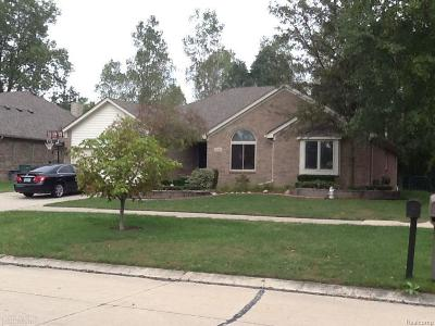 Macomb Twp Single Family Home For Sale: 19023 Pine Cone Dr.