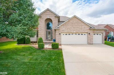 MACOMB Single Family Home For Sale: 50561 Nesting Ridge Drive