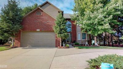 MACOMB Single Family Home For Sale: 18681 Turnberry