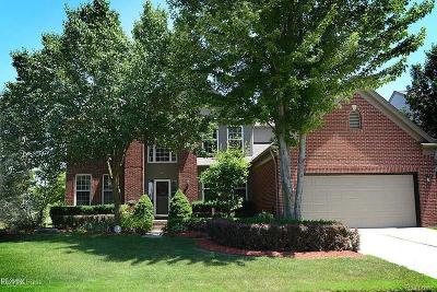 MACOMB Single Family Home For Sale: 50878 Lancelot Drive
