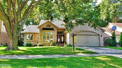 Clinton Twp Single Family Home For Sale: 43377 Rivergate Dr