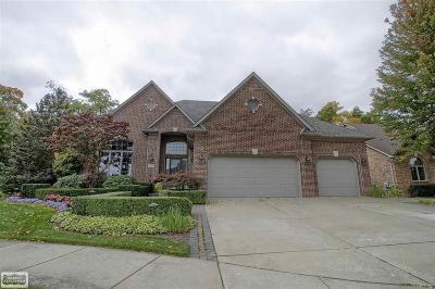 Clinton Twp Single Family Home For Sale: 42855 Tonquish Drive #Unit #12