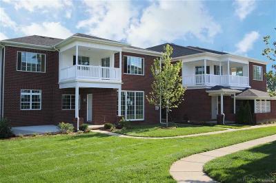 Washington Twp Condo/Townhouse For Sale: 6996 Boulder Pointe Drive #87/15