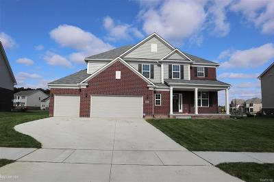 Lake Orion, Orion Twp, Clarkston, Independence Twp, Oxford Single Family Home For Sale: 2449 Findley Cir