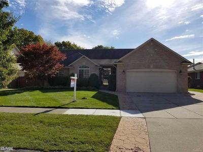 Macomb Twp Single Family Home For Sale: 22618 Bluewater Dr