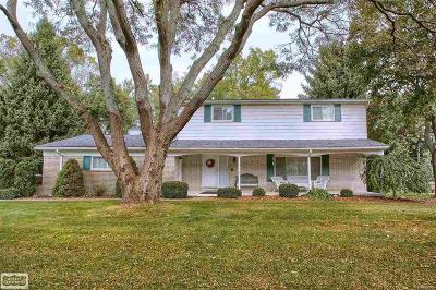 Macomb County Single Family Home For Sale: 6255 Pinetree Drive