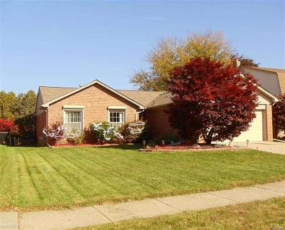 Macomb Twp Single Family Home For Sale: 18337 Pine Hill Dr