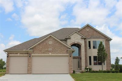 Macomb Twp Single Family Home For Sale: 17121 Chianti Court