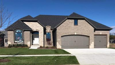 Macomb Twp Single Family Home For Sale: 22003 Chaucer Ct